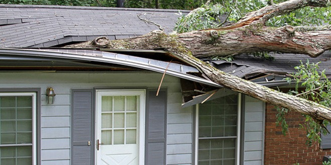 home-insurance-florida-claims-network